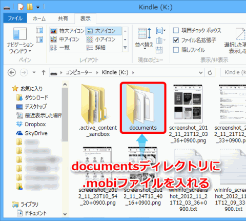 KindlePaperwhiteConv4_sh