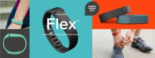 FitbitFlex_sh