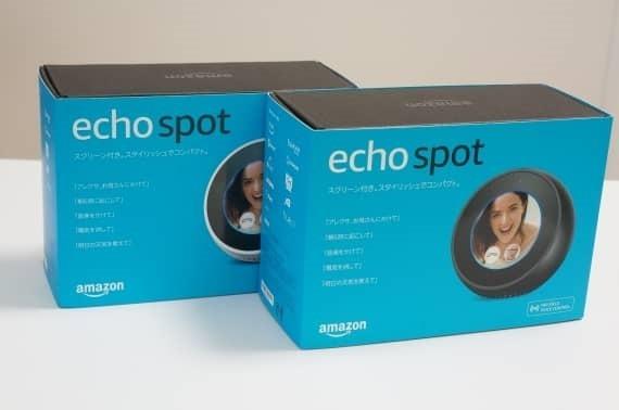 echo_spot_review_2_sh